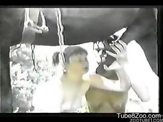 Two farm girls are blowing stallion cock in vintage bestiality