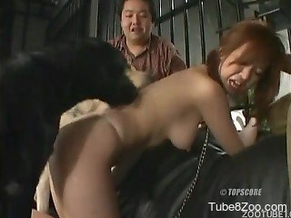 Submissive Japanese zoophile is sucking meaty doggy dick