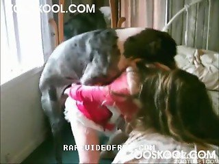Grey doggy hardly pounds a sex-addicted hooker from behind