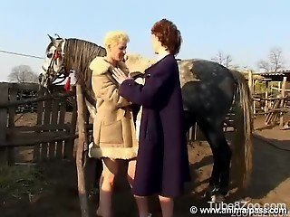Redhead and blonde are enjoying dirty bestiality sex with a st...