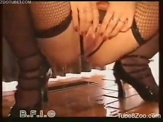 Sweet chick on high heels fucks with a playful white doggy