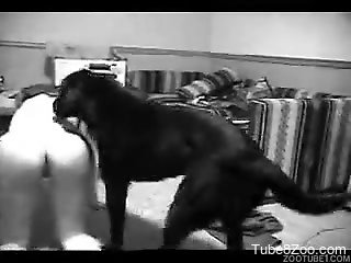 Chick lifts ass up to make dog bang her from behind
