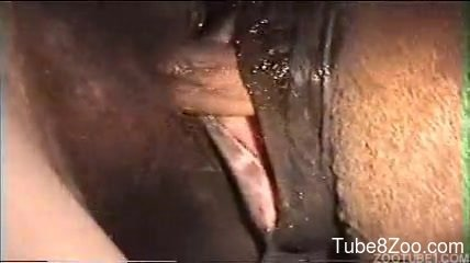 Porno video amateur