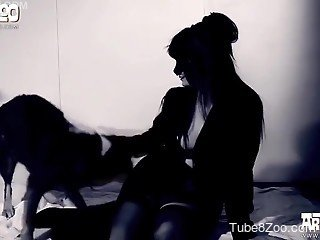 Sensual black dog fucked her crack in doggy style pose