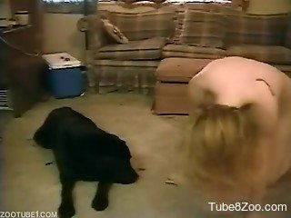 Young blonde demands a hard pounding from her dog