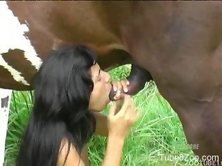 Veiny stallion cock worshiped by a sexy Latina