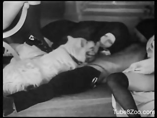 Two nuns sharing a dog's cock in a retro porn video