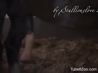 Voyeur-style porno video focusing on a horse cock
