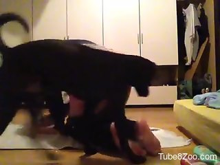 Adidas-wearing amateur seducing a black doggo