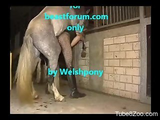 Sexy Welsh dude getting fucked savagely by a kinky pony