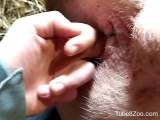 Tight hole hate-fucked by a seasoned zoophile dude