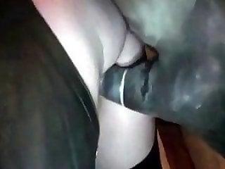 Horses Porn